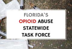 Opioid Abuse Working Group title=